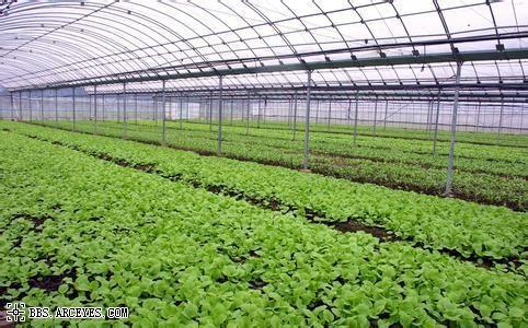 """3s技術農業 中華財險聯合國家農信中心 打造""""數字農險""""新模式"""
